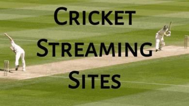 Best Online Cricket Sites